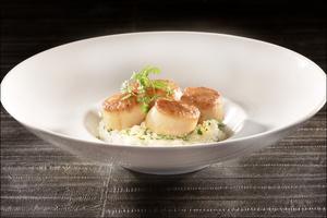 04 plat saint jacques restaurant lyon cite internationale BRG Bistrot Rive Gauche