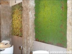 6 eskis salle mur vegetal  Eskis