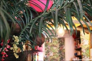 2 deco palmier restaurant des iles cuisine exotique lyon Le restaurant des iles