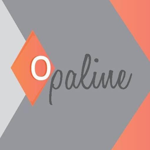 Le restaurant Opaline à 69004 Lyon recommandé