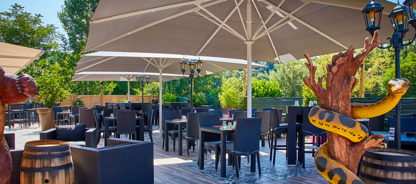 Terrasse du restaurant Coco's dinner à Fleurieu